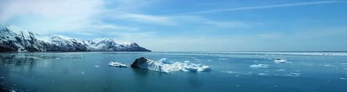 Hubbard Glacier Icebergs