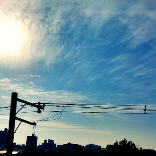 今日の写真 No.105 – 昨日Instagramに投稿した写真(4枚)/iPhone4 + Photo fx