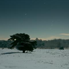 98 Sekunden (jpk.) Tags: 2010 dezember haltern nacht schnee westruperheide abends nachts unterwegs lumix canoneos7d baum landstrase halternamsee wolken sterne dunkelheit ©janphilipkopka ef235mm