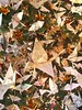 1000s Of Origami Crains With Notes Of Peace From Children