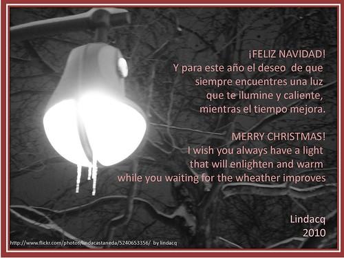 ¡Feliz Navidad 2010! Merry Christmas!