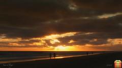 golden path (susodediego ) Tags: ocean sunset praia beach strand landscape tramonto sonnenuntergang fuerteventura playa paisaje canarias atlantic prdosol puestadesol paysage landschaft paesaggio canaryisland kanarischeinseln janda flickrexportdemo leicadlux4