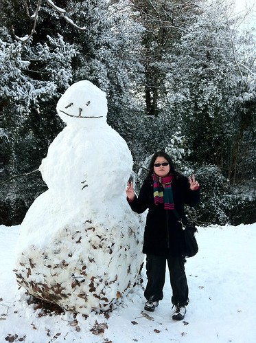 Big snowman by American Embassy in Phoenix Park. (I didn't make the snowman btw)