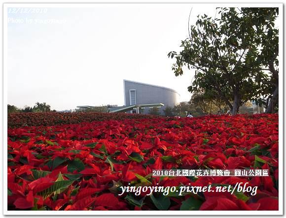 2010花博_圓山公園區 精緻花卉區  991212_R0016679