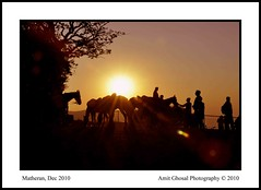 "The Sunset and the Silhouette (Amit Ghosal ""The Clickings"") Tags: light sunset india silhouette nikon amit matheran d90 ghosal"