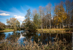 In Kossovo (lemmingby) Tags: blue autumn sky reflection nature water landscape travels skies trips belarus ponds kossovo brestregion otherwheres