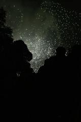 ARTIFICIAL SKY (federica.poluzzi) Tags: valencia fireworks federica artificiali fallas fuochi poluzzi