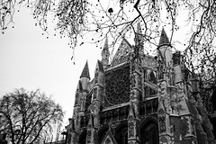Westminster Abby (Tim_Arai) Tags: leica london film church architecture 35mm photoaday hp5 summilux ilford m6 westminsterabby preasph filmshots london2010