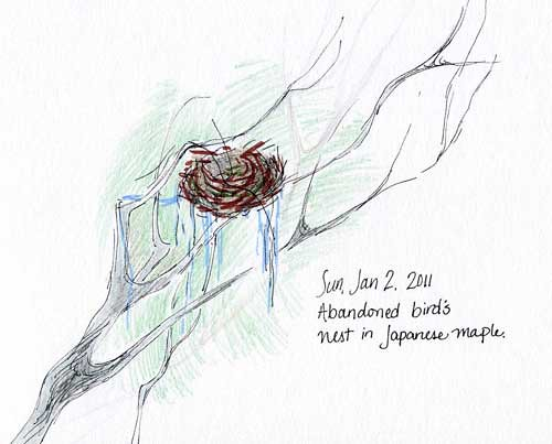 1-2-2011, Bird's Nest