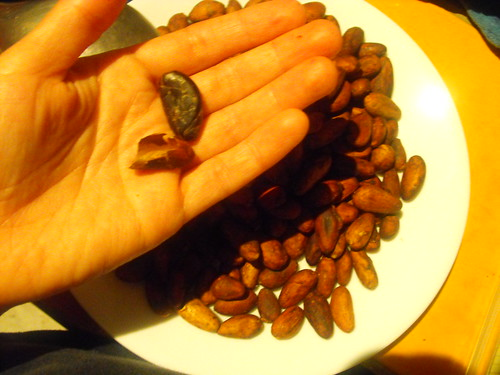 Cacao pelado