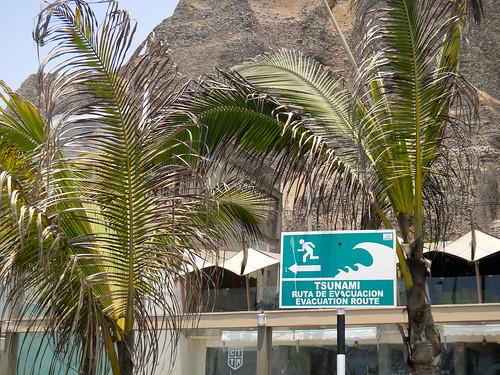 Run Like Hell It's a Tsunami Sign!!!