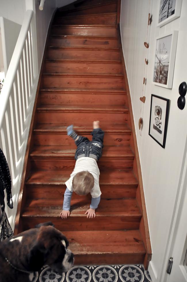 nilse i trappan