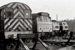 Typical weekend at Cockshute, 1976. (robmcrorie) Tags: yard train rail railway loco trains class trent 25 british locomotive enthusiast railways staffordshire stoke railfan 47 08 cockshute