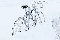 La bicyclette bleue (monilague) Tags: street blue winter white snow toronto ontario building tree car bicycle landscape automobile hiver sidewalk wheeler neige paysage rue difice bicyclette arbre trottoir beu vhicule
