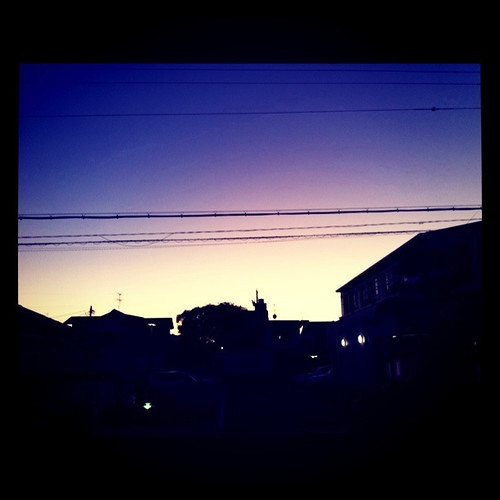 2011/1/12 夕焼け