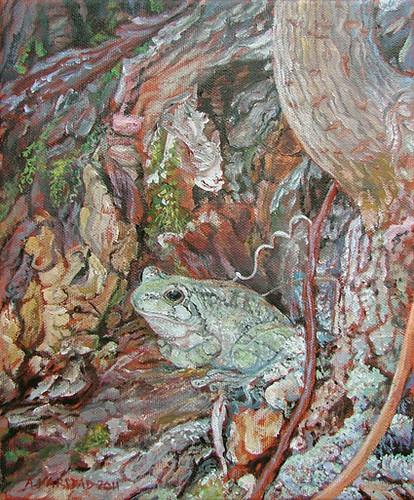 Gray Tree Frog Retreat