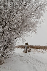 _MG_6322.jpg (Matzedonien) Tags: schnee winter snow canon coast is 4 insel usm landschaft lanscape kste 24105 poel canonef24105mmf4lisusm canon24105 eos7d cannon7d silvester2010