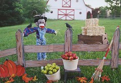 Sock Monkey Fall Fun (monkeymoments) Tags: leaves barn fence pumpkins harvest sockmonkeys monkeys sockmonkey apples hay crows fallscene
