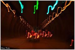 O tnel apenas em cores (Otavio Coelho) Tags: estrada carro tunel moderno