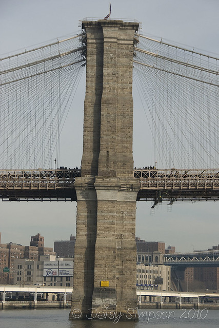 d8 brooklyn bridge 1