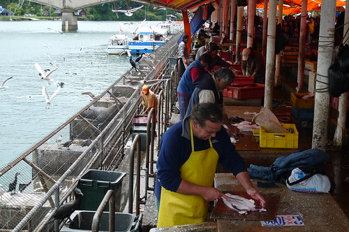 Fish Market - Valdivia, Chile