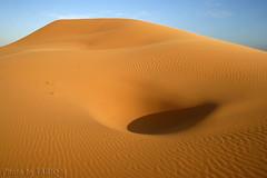 Hole in Sand- Explore Front Page (TARIQ-M) Tags: shadow texture landscape sand waves desert hole ripple dunes ripples riyadh saudiarabia hdr app  canonefs1855       canon400d        tariqm  tariqalmutlaq kingofdesert 100606169424624226321postsnajd12sa