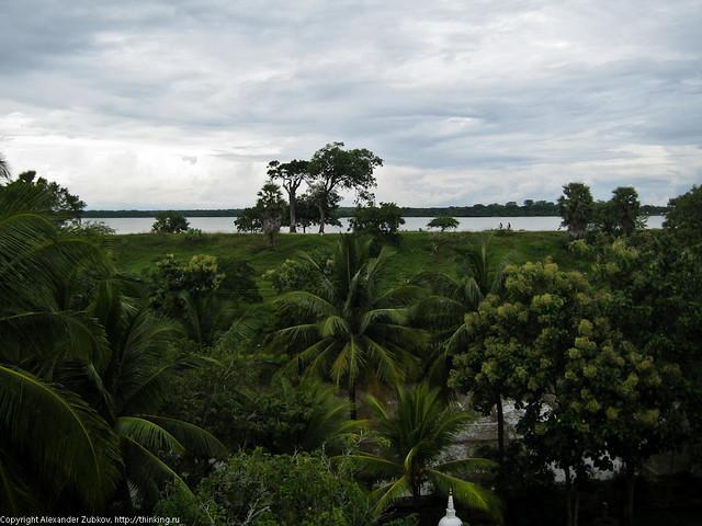 Джунгли и озеро