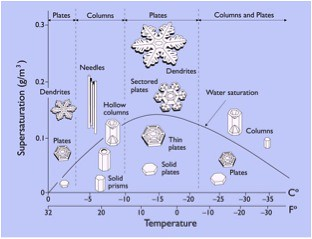 Snowflake Picture
