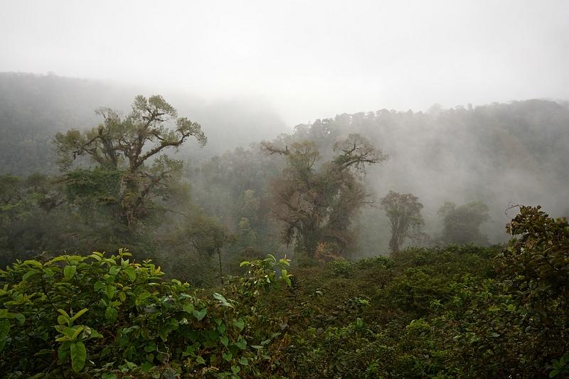Costa Rica-32