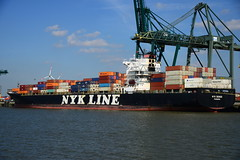NYK Deneb DST_4948 (larry_antwerp) Tags: psa psaterminal container antwerp antwerpen       port        belgium belgi          schip ship vessel        schelde