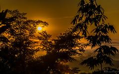 Sunrise (GttHard) Tags: hotelphuchaisaimountainressort thailande sunrise travel morning sun asia