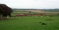 Last post (Auchlander) Tags: res clydevalley tpo class67