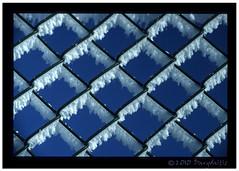 blue-n-white54 (jdandsad@gmail.com) Tags: cold film fence frost fuji bluesky velvia nikonf2 coolscanved