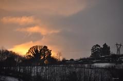 Nieve y Fuego (Oly_ [Sin tiempo]) Tags: snow contraluz landscape fire arboles nieve fuego 1741 nieveyfuego
