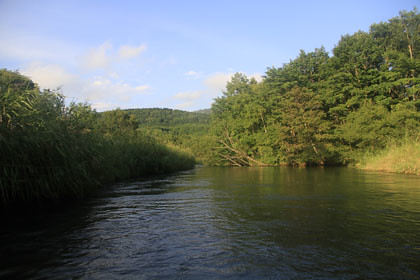 釧路川 源流
