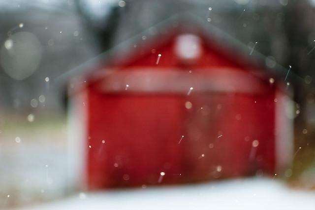 351/365: winter, finally