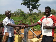 A Busoga Trust staff member receives a chick from the community