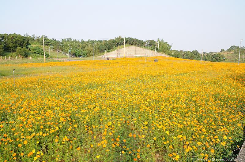 孔宅綠園 (6).jpg