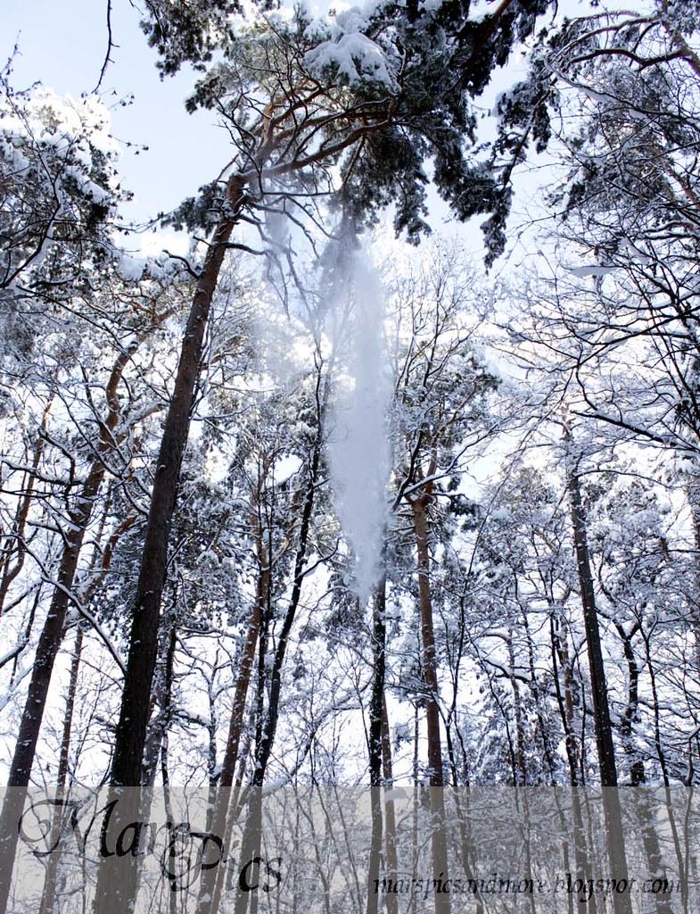 Snow Avalances