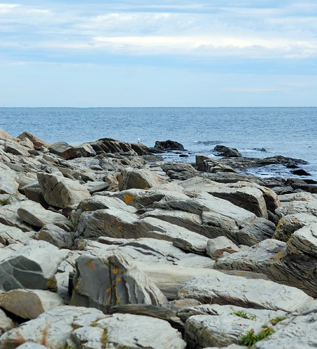 Cape Elizabeth Rocks