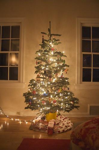 tree lit
