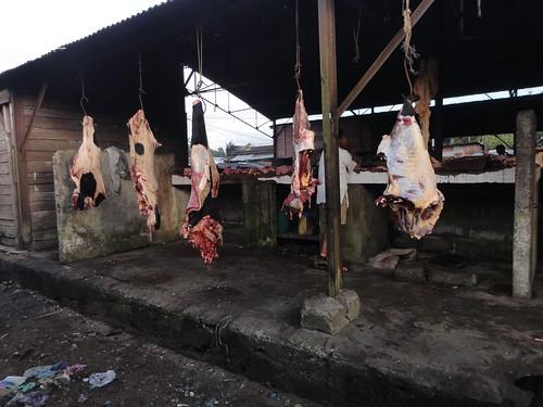 Zebu Meat
