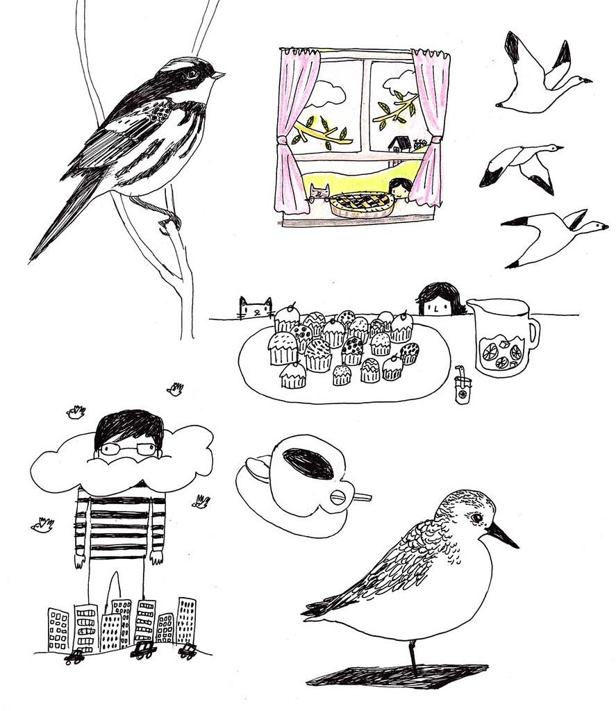 birdsetc
