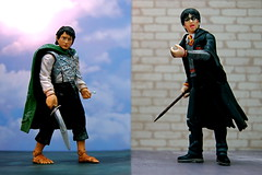Frodo Baggins vs. Harry Potter (353/365)