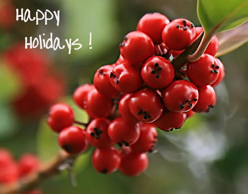 Happy Holidays! (image: kevin dooley/flickr)