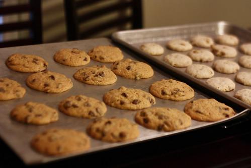 mmm fresh cookies
