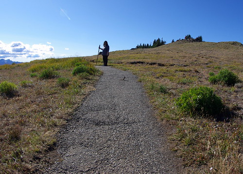 2010-08-28 Hurricane Ridge (92)