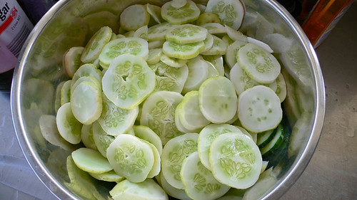 Cucumbers for bread & butter pickle