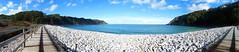 Playa Concha Artedo (ASUS_tado) Tags: sea beach clouds mar stones asturias playa panoramic paseo panoramica nubes artedo piedras cantabrico