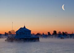 Mist From Beyond (mortenprom) Tags: ocean winter snow ice water oslo norway norge skandinavien norwegen explore noruega fjord portfolio scandinavia 2010 bygdøy vividcolors noorwegen noreg alaskanhusky skandinavia ef1740mmf4lusm canoneos5dmarkii mortenprom